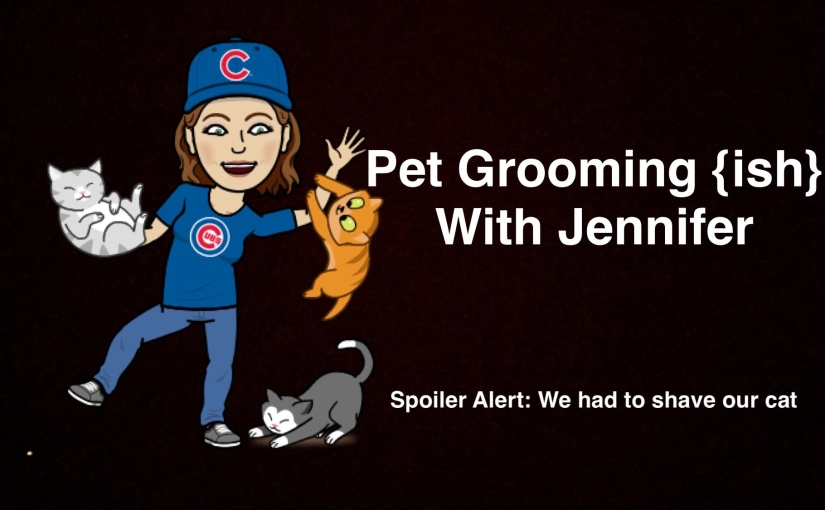 Pet Grooming {ish} With Jennifer